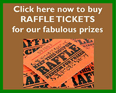 RaffleTickets